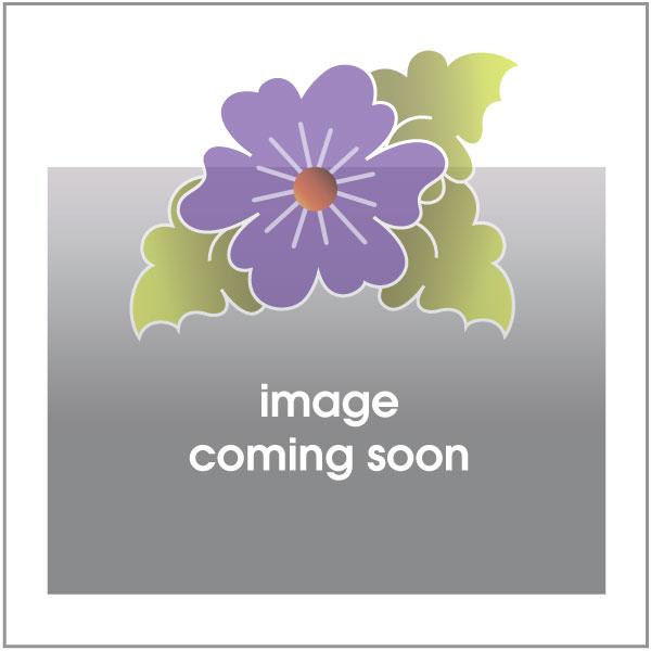 Butterfly - Purple Dotz - w/ letters - Applique